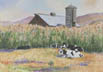 Cows In The Corn (gouache, prints, note card)