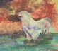 Old Rooster (pastel, prints, note card)