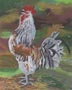 Proud Rooster (pastel, prints, note card)