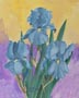 Three Blue Iris (watercolor, prints, note card)