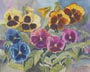 Mixed Pansies (watercolor, prints, note card, ACEO, magnet)