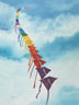 Flying Colors (oil, prints, note card)