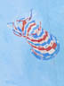 Star Spangled Spinsock (oil, prints on paper and canvas)
