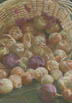 A Basket Of Onions (pastel, prints, note card)