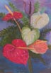 Anthurium (pastel, prints, note card)